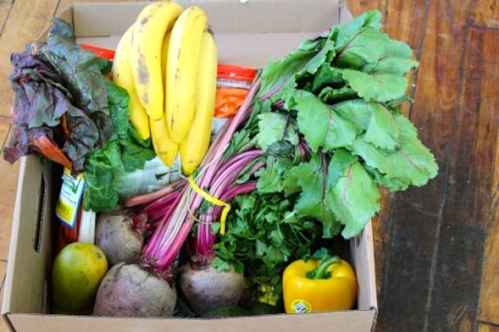 What's In My Organics Delivery Box - Video thumbnail