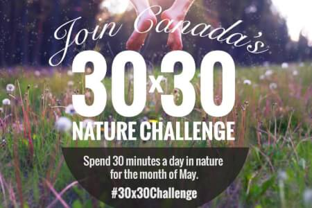 Join Me in the 30x30 Nature Challenge! thumbnail