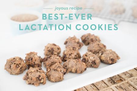 Best-Ever Lactation Cookies thumbnail