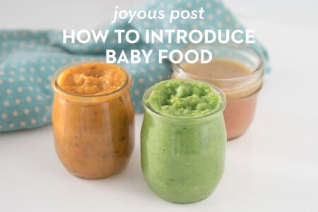 Baby Food Introduction thumbnail