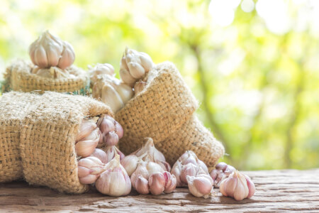 6 Health Benefits of Garlic thumbnail